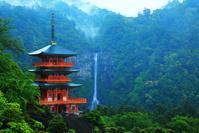 和歌山県 雨の青岸渡寺・三重塔と那智の滝 朝霧