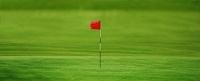 ゴルフのグリーンと旗