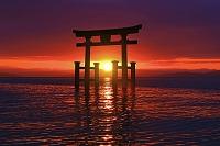 滋賀県 白鬚神社