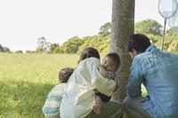 昆虫採集をする日本人家族