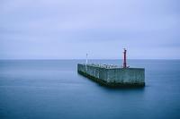 北海道 知床 根室海峡 照明灯のある消波ブロックとウミネコの...