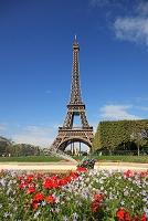 フランス パリのセーヌ河岸 エッフェル塔