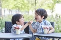 アイスを食べる日本人の双子
