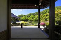 京都府 天龍寺 小方丈から見る新緑の曹源池庭園と嵐山
