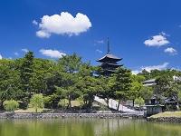 奈良県 猿沢の池と興福寺五重塔