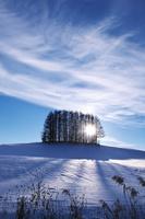 北海道 冬の丘(農地)