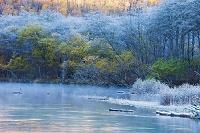 長野県 上高地 晩秋の大正池
