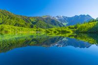 長野県 上高地大正池と穂高連峰