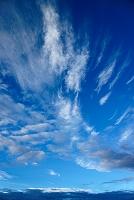 山梨県 筋雲 富士山標高3300mにて
