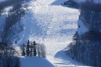 長野県 白馬八方尾根スキー場