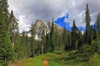 エメラルドレイクのハイキングコース