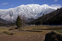 新潟県 田園と八海山