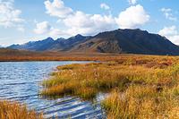 秋色のトゥームストーン準州立公園