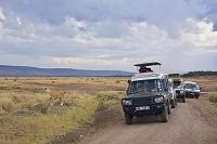 ケニア サファリドライブ