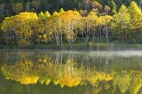 長野県 木戸池の朝