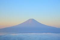 山梨県 西川林道 朝日に染まる夏の富士山と雲海
