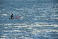ハワイ カウアイ島 ハナレイ・ビーチ