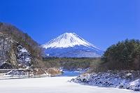 山梨県 富士山と精進湖