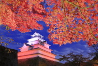 紅葉の会津若松城のライトアップ