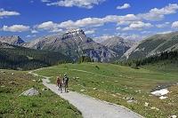 カナダ サンシヤイン・メドウズのトレッキングコースと山並み