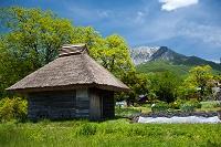 鳥取県 江府町 茅葺の納屋と大山南壁