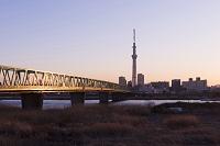 木根川橋と東京スカイツリーの夕景