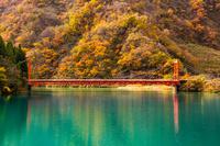 富山県 飛越峡合掌ラインの紅葉