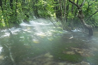 秋田県 獅子ケ鼻湿原