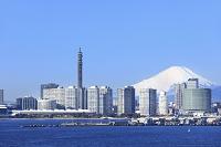 神奈川県 大黒大橋から望む富士山とビル群