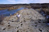 アメリカ 恐竜の足跡の遺跡に立つ外国人男性