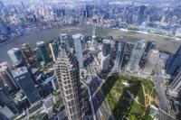 中国 上海 高層ビル群