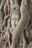 タイ タイ中部 アユタヤ