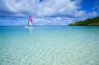 パラオ コロール島 アラカベサン島