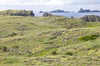 東京都 小笠原諸島にてケータ島(聟島)の風景を堪能する人々