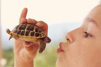 亀にキスをする女の子