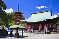 東京都 高幡不動尊と五重塔と不動堂