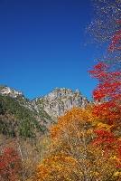岐阜県 錫杖岳と紅葉