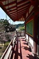 奈良県 桜と談山神社