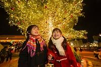 クリスマスツリーと日本人の子供