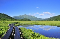 群馬県 尾瀬 中田代の池塘から望む至仏山と木道