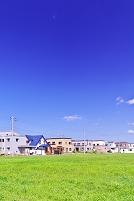 北海道 緑の野原と新興住宅地の家並み