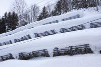 北海道 雪崩予防柵