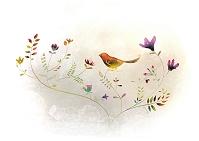 花と小鳥 イラスト