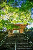香川県 根香寺の山門