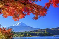 山梨県 河口湖より富士山と紅葉