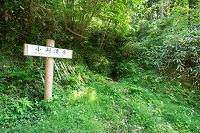 富山県 増山城跡 小判清水跡