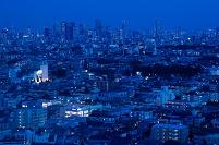 東京都心の夜景