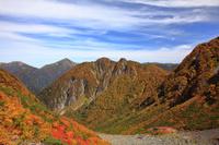 長野県 紅葉の涸沢キャンプ場と屏風岩