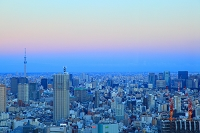 東京都 都庁からスカイツリー方面 夕景