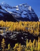 カナダ ヨーホー国立公園 オダレイ山